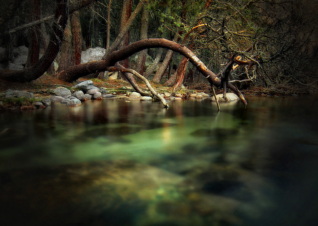 Photograph Over the river by Amador  on 500px