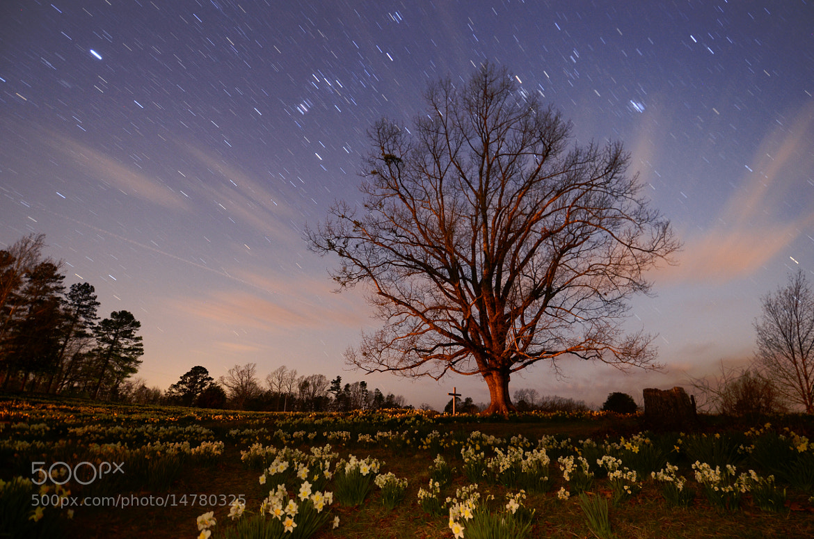 Photograph Star Song by Kirk Jordan on 500px