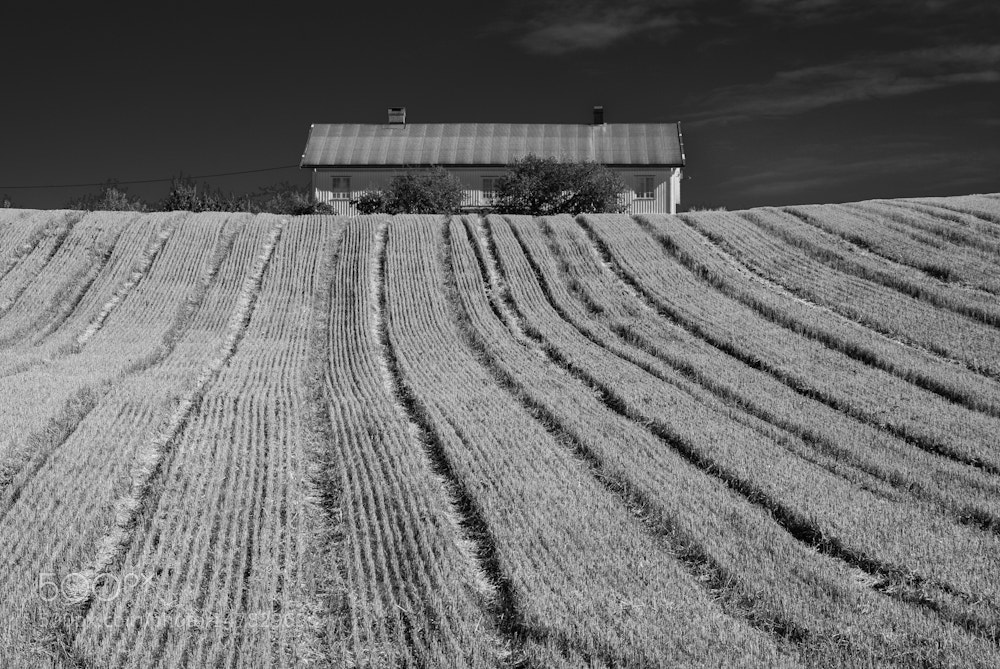 Photograph Untitled by Szymon Sztajer on 500px