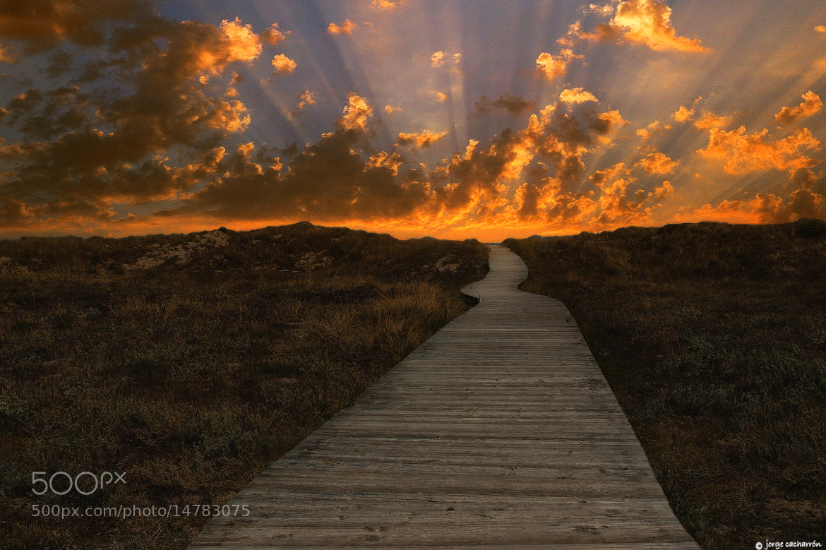 Photograph Caminos a niguna parte (VII) by Jorge Cacharrón on 500px