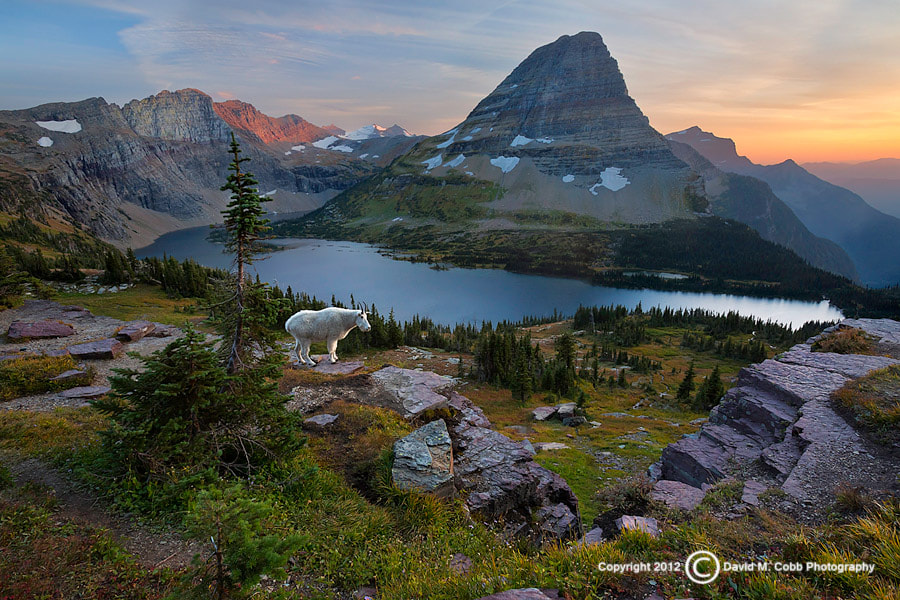 Photograph Above it All by David Cobb on 500px