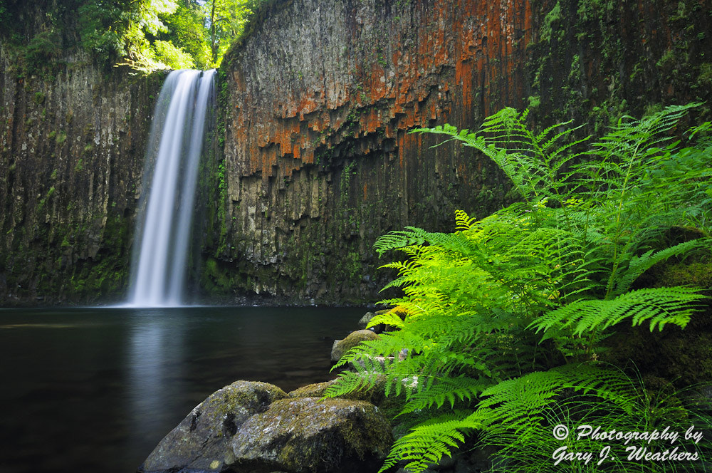 Photograph Abiqua Falls by Gary Weathers on 500px