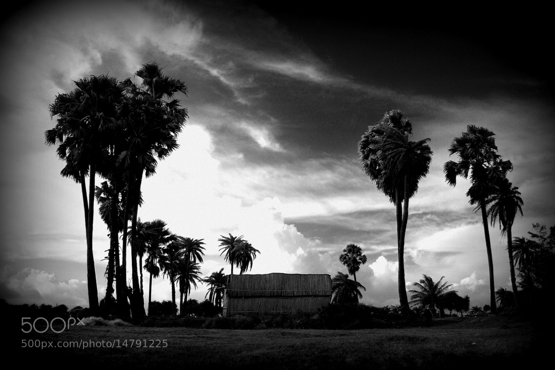 Photograph dark landscape by Pranab Ghosh on 500px