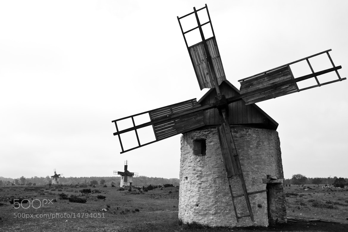 Photograph Windmills in Gotland, Sweden by Kristoffer Nærø  Ytterland on 500px