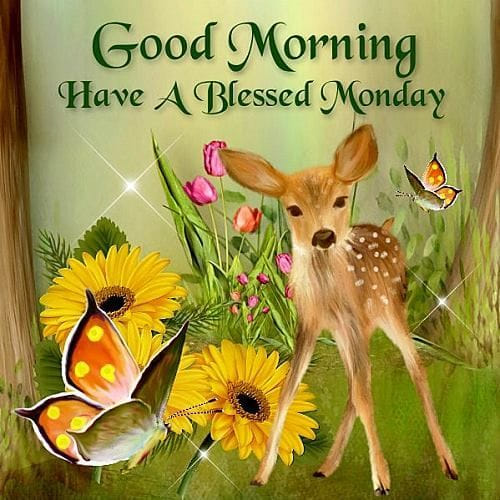Image result for images for have a blessed monday