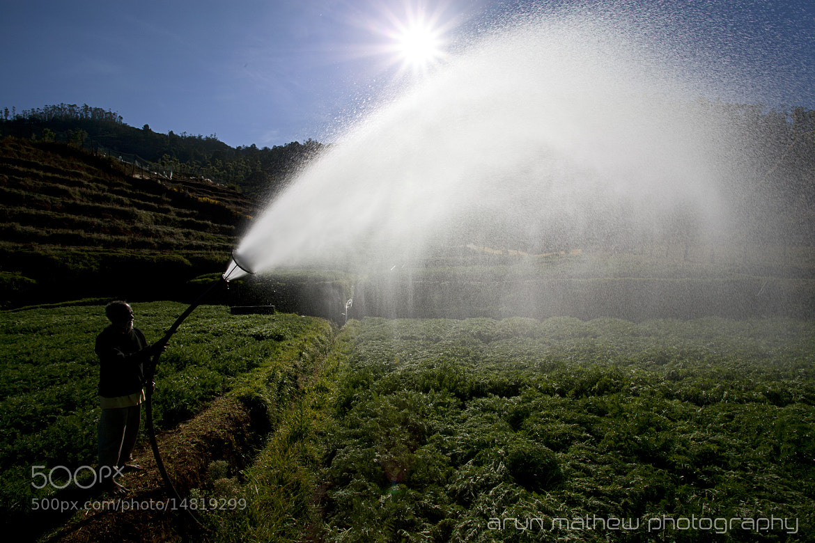 Photograph Sun spray by Arun Mathew on 500px