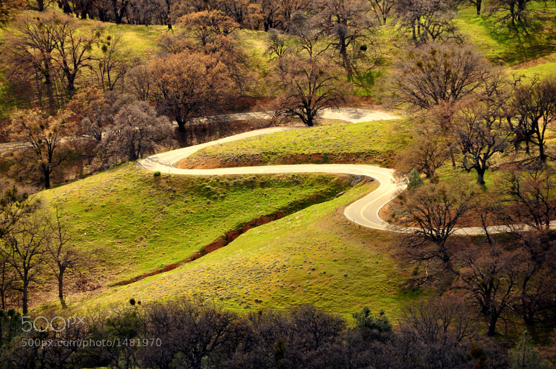 Photograph Wonderland by Shrenik Dedhia on 500px