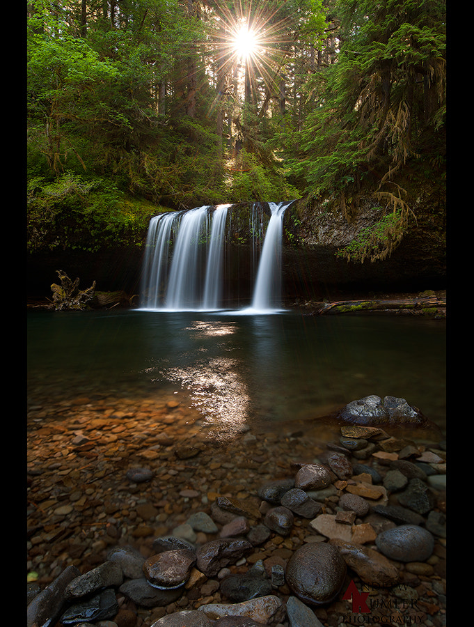 Photograph Butte Creek Falls, Oregon... by Andrew Kumler on 500px