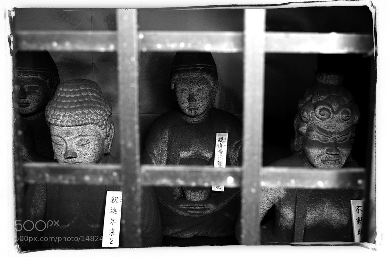 Photograph Stone Buddha by Mitsuru Moriguchi on 500px