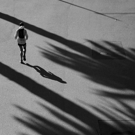 Shadow of a Runner