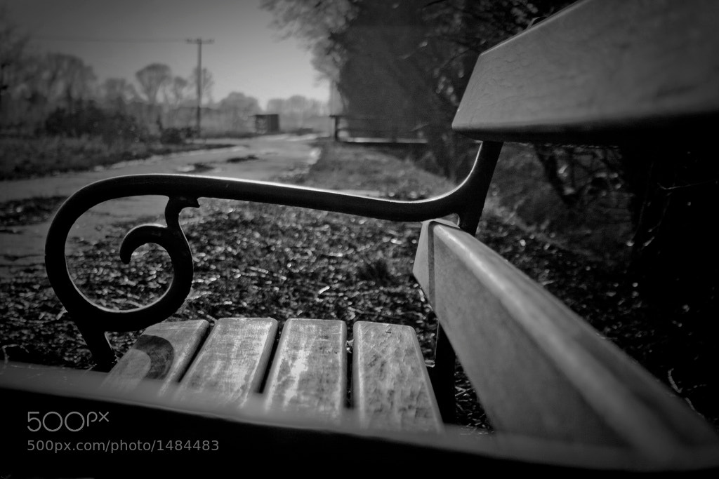 Photograph Swirly Bench by Karsten Planz on 500px