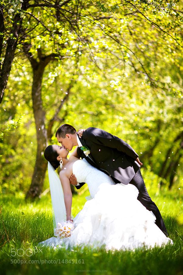 Photograph Wedding by Alexander Loginov on 500px