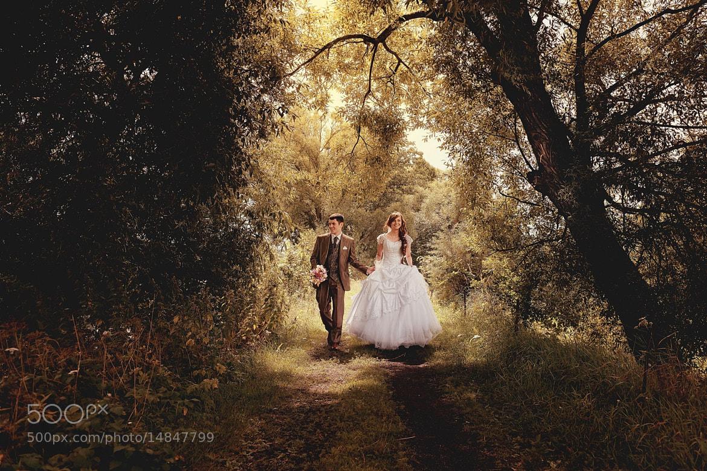 Photograph Fairytale by Alex Shevtsov on 500px