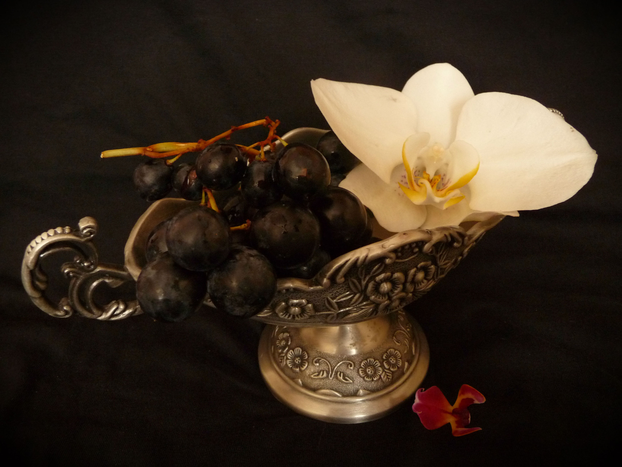 Photograph Grapes and orchids by Delia Cozma on 500px