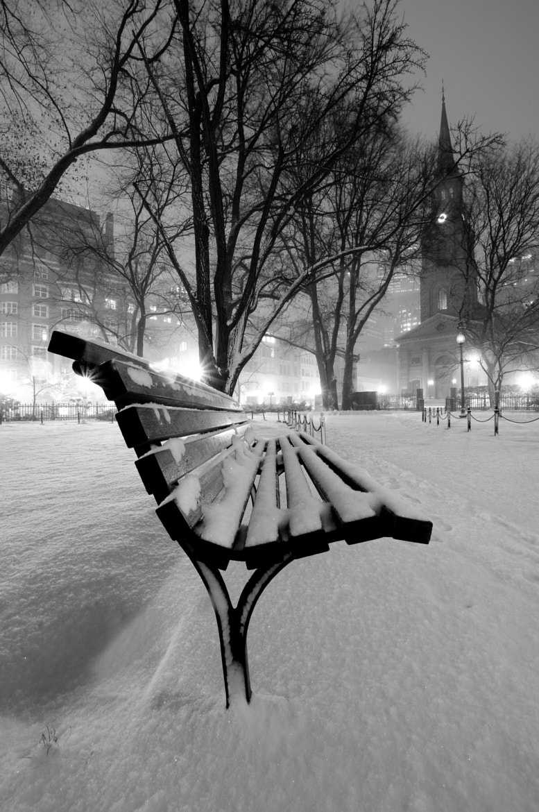 Photograph A Cold Winter's Night in the Park by Will Strauss on 500px