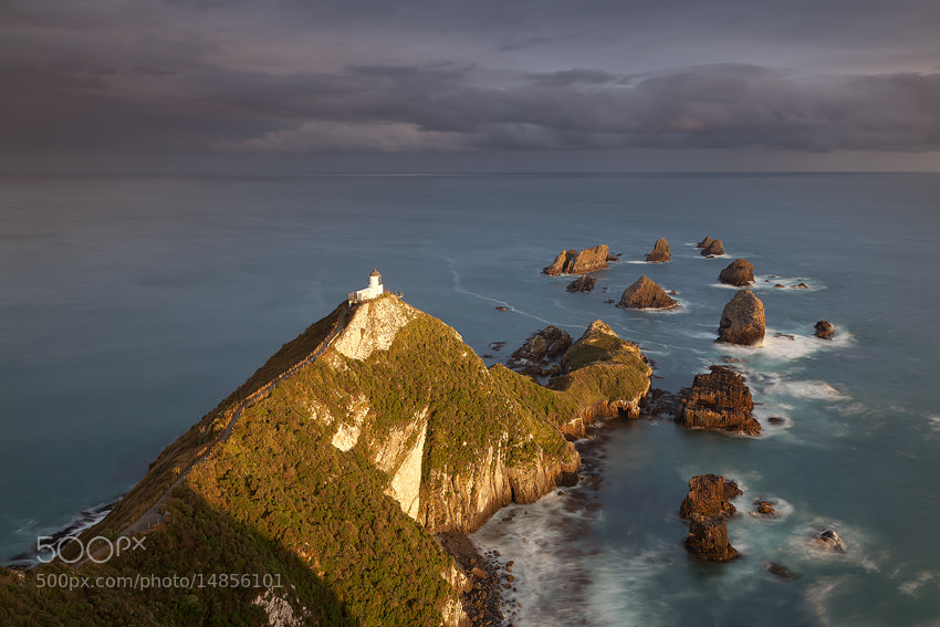 Photograph Nugget Point, South Island, New Zealand by Russell Pike on 500px