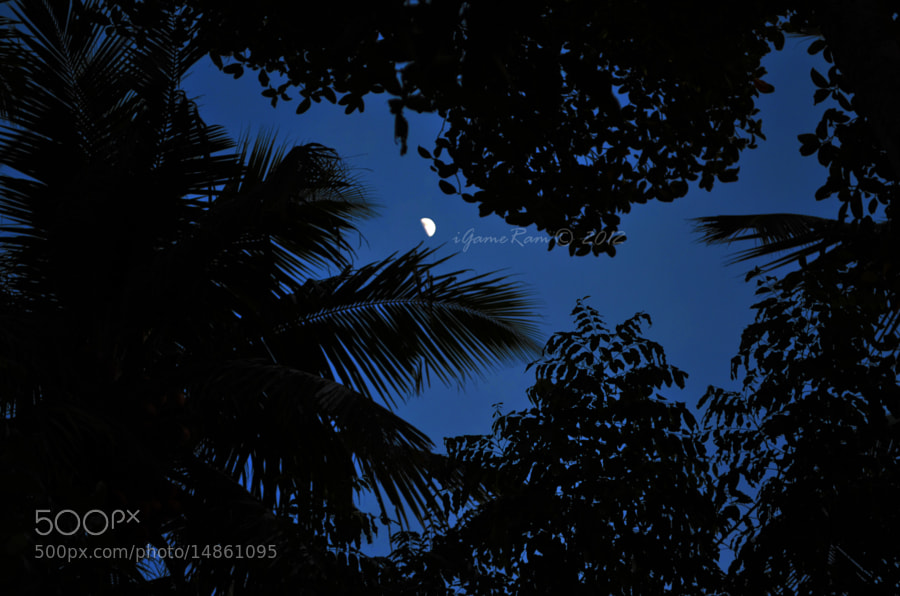 Photograph Moon by Sriram Haribabu on 500px