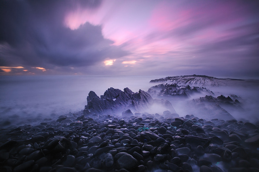 Photograph Purple by Andy Mumford on 500px