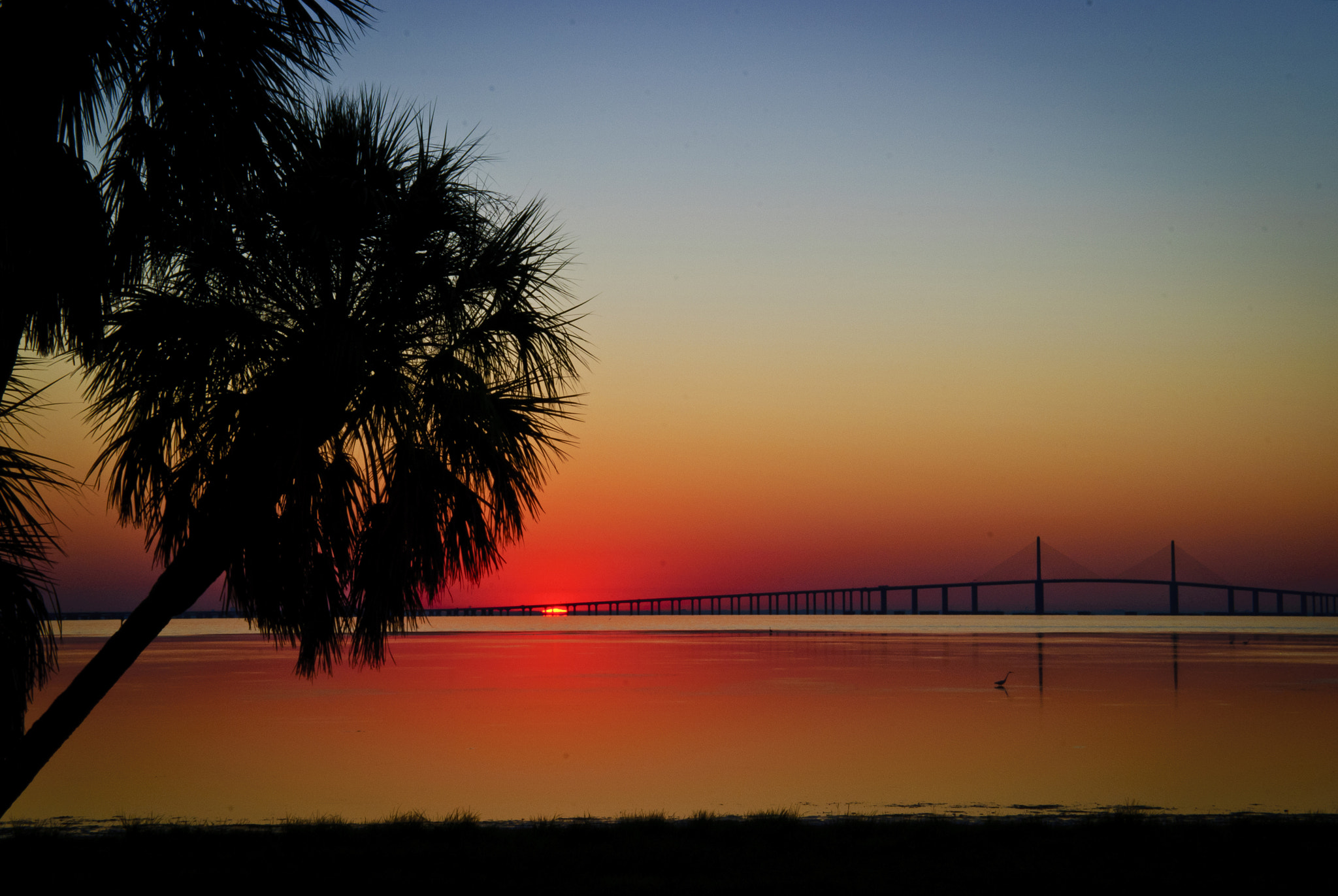 Photograph Sunrise over the Sunshine Skyway Bridge by Loomes Photography on 500px