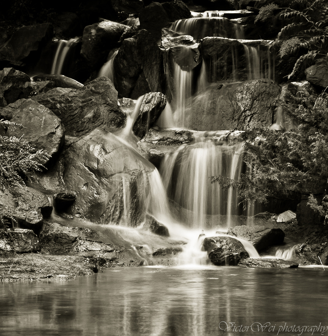 Photograph Fluid Emotions by Victor Wei on 500px