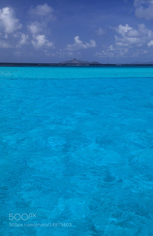 Photograph Go for a swim by Cornelia Braun on 500px
