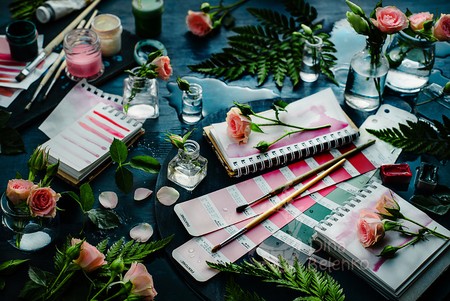 Shades of rose by Dina Belenko on 500px.com