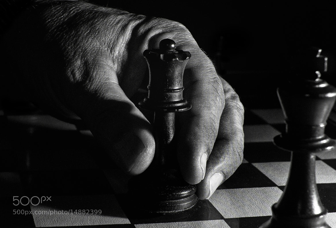Photograph Checkmate! by Phil  Pippo on 500px