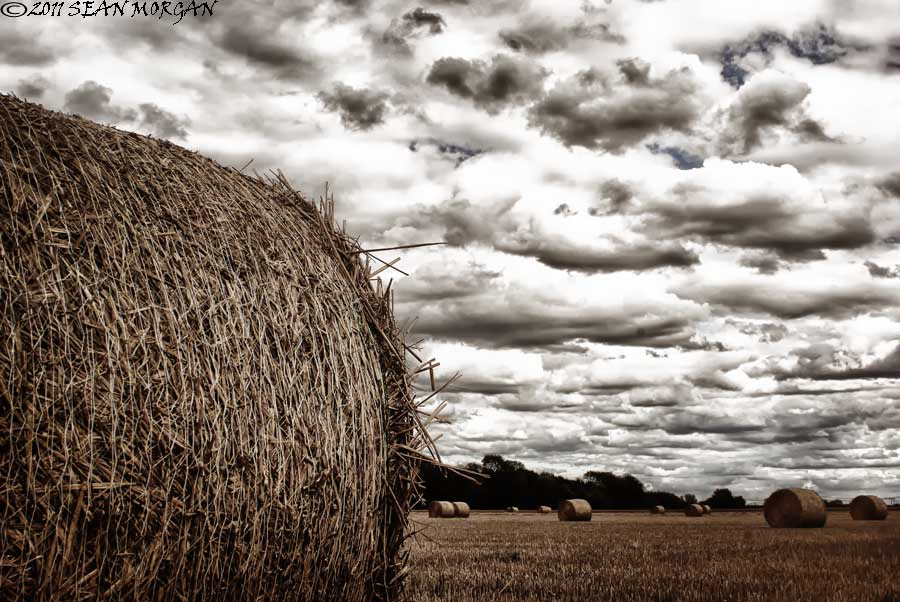 Photograph Harvest Time by Sean Morgan on 500px