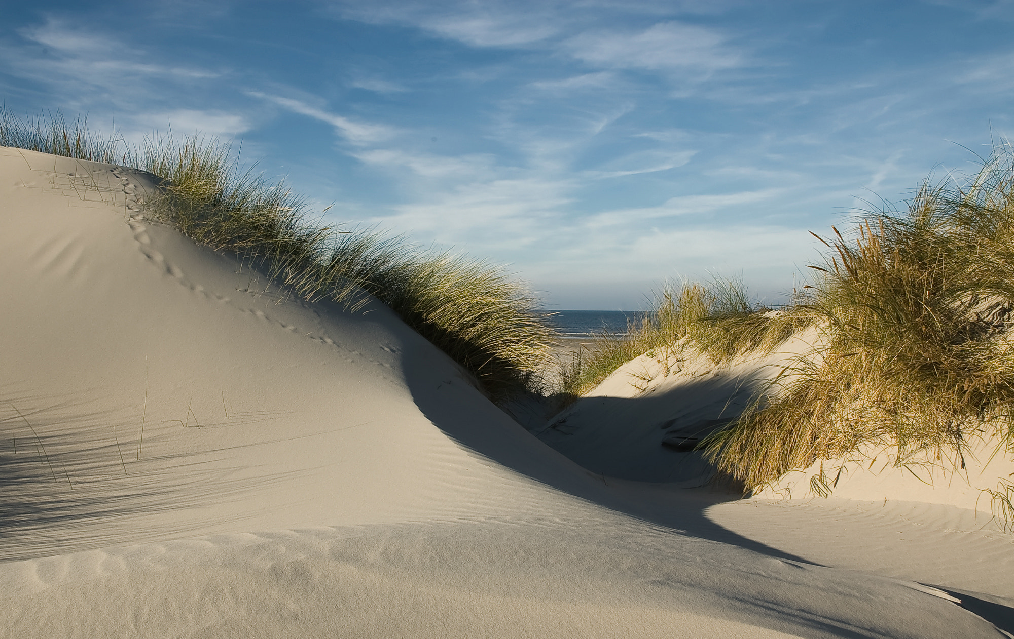 Photograph Onto the Beach by Daniel Bosma on 500px