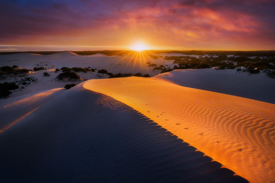 Tracking Dawn by Dylan Toh  & Marianne Lim on 500px.com