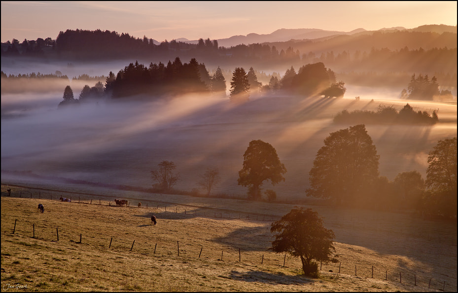 Photograph Misty Morning by Jan Geerk on 500px