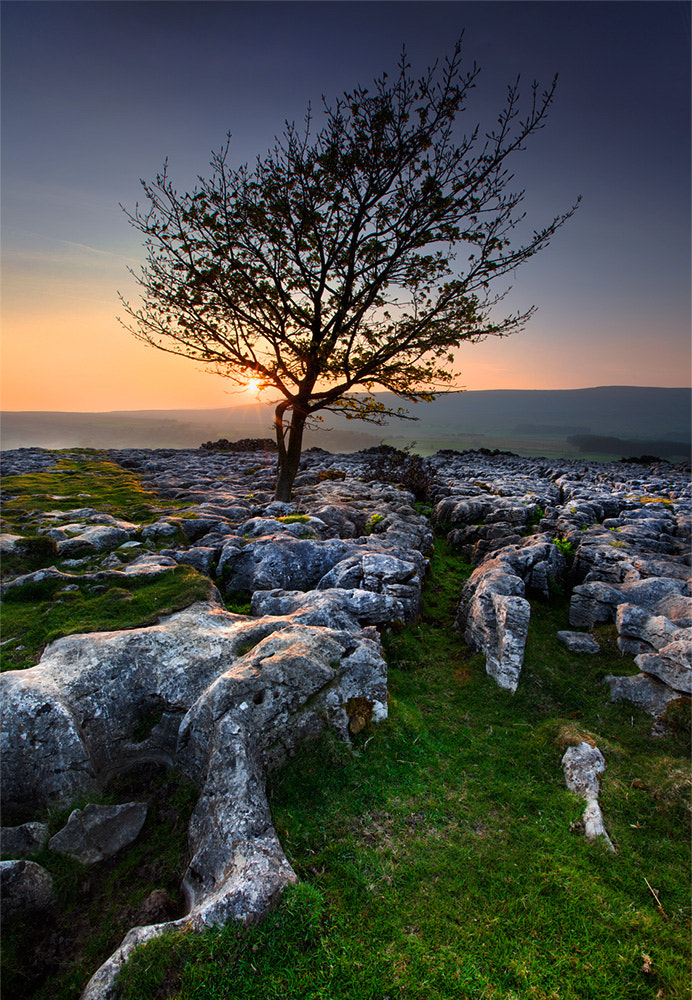 Photograph Yorkshire Dales  by Stephen Emerson on 500px