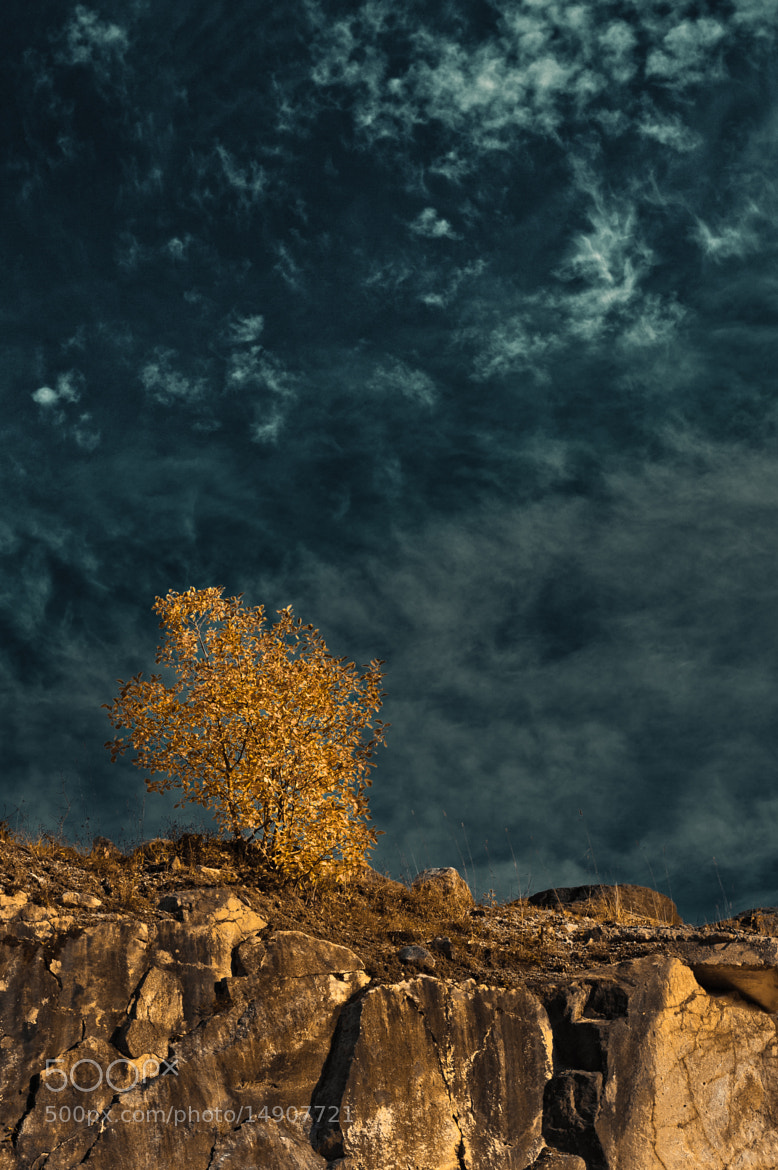 Photograph Fall II by Geir Magne  Sætre on 500px