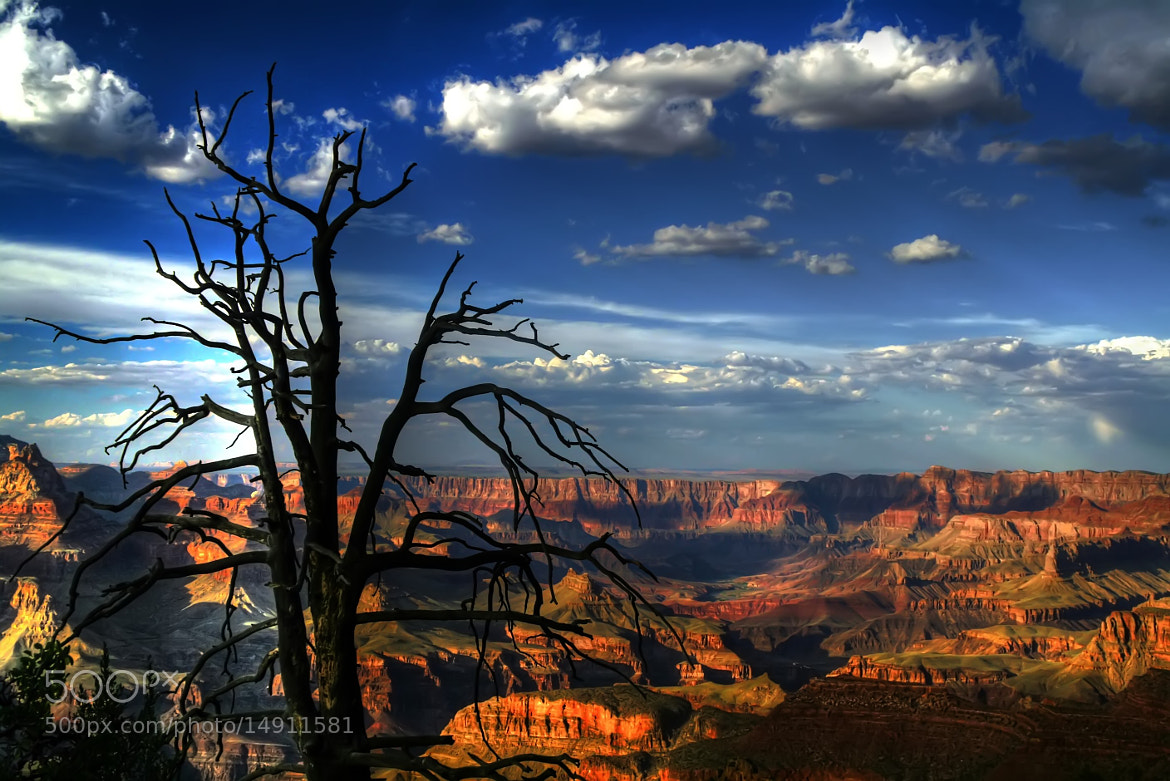 Photograph Grand Canyon  by Marco Caciolli on 500px