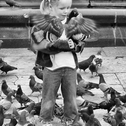 Young girl feeding pigeons, Canon POWERSHOT S40