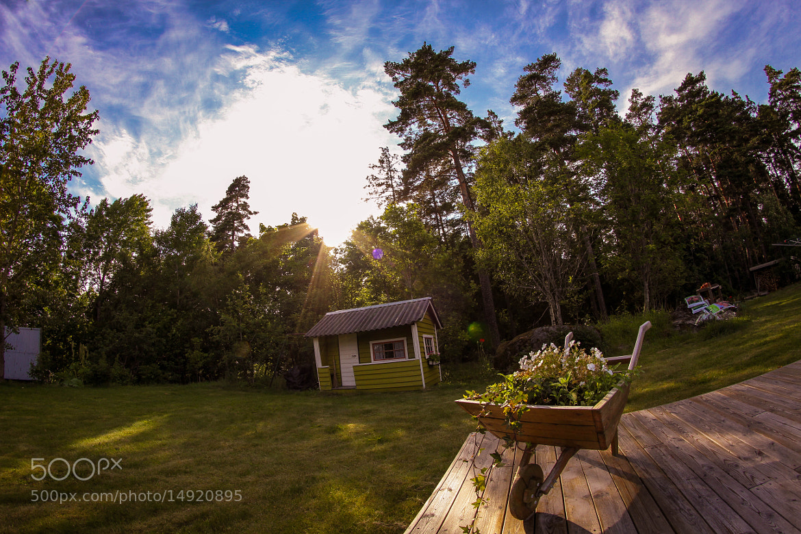 Photograph Summer Through a Fisheye by Dan Pascu on 500px