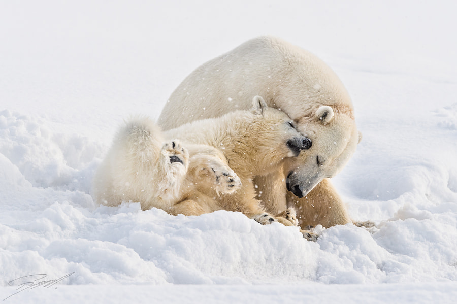Enjoying life with mom by Roy Mangersnes on 500px.com