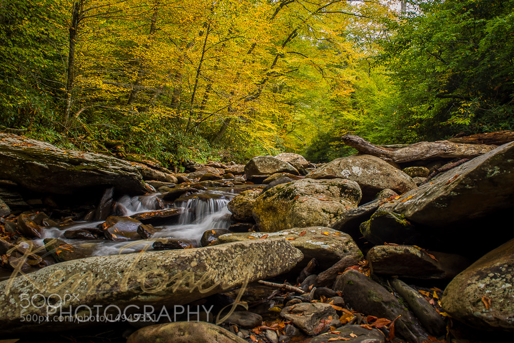 Photograph Parkway Creek by Ken Toney on 500px
