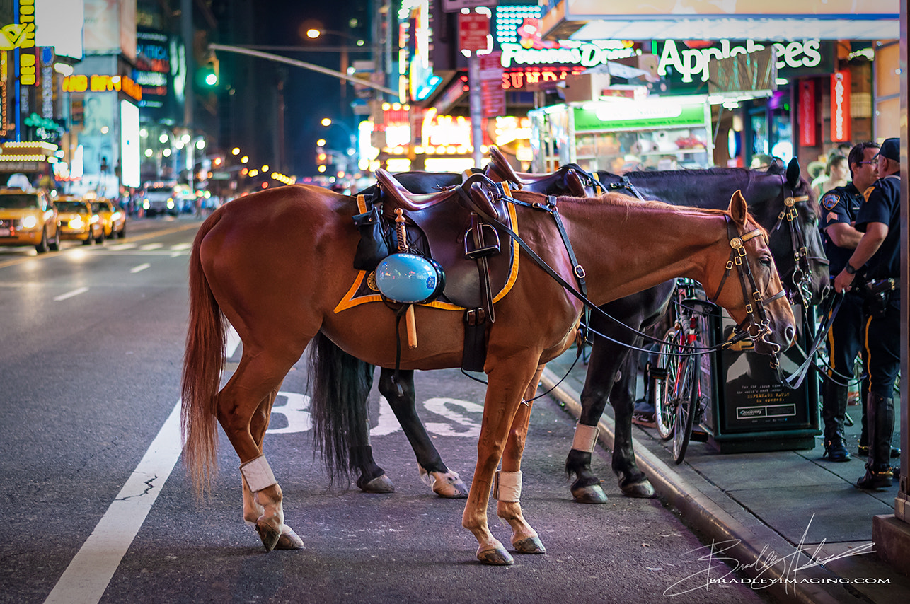 Photograph new york's finest by bradleyimaging  on 500px