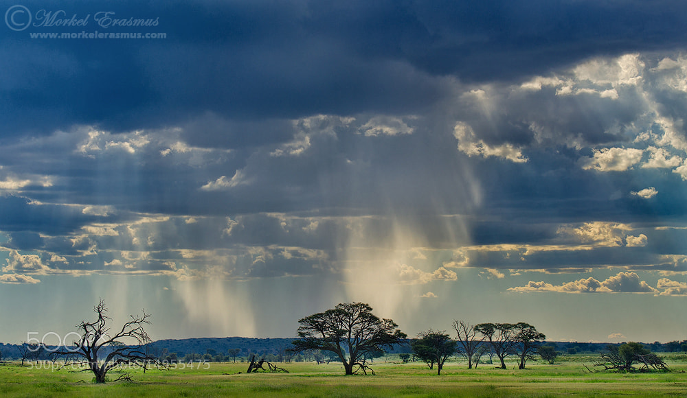 Photograph Kalahari Rainscape by Morkel Erasmus on 500px