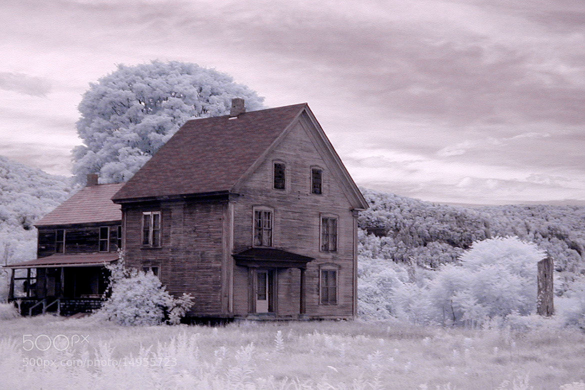 Photograph Haunted? by Guy Biechele on 500px