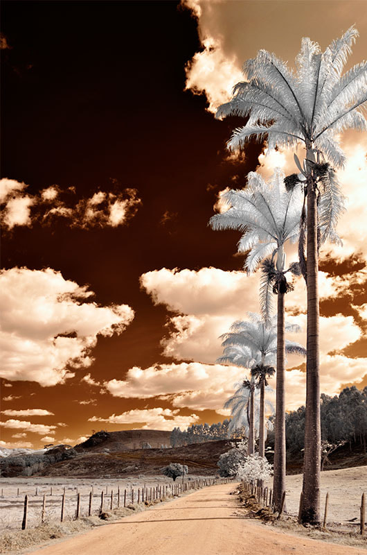 Photograph Brown sky by Gerson Leite on 500px