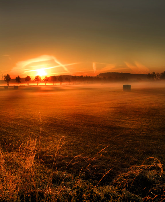 Photograph good morning by Patrick Strik on 500px