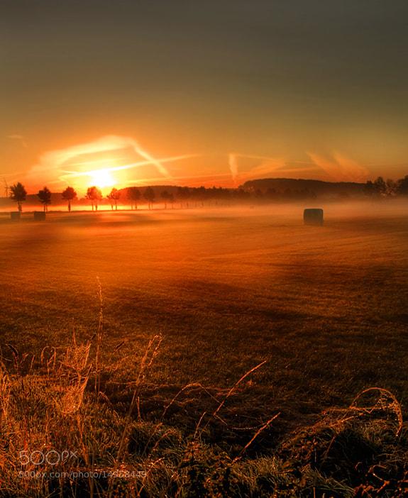 Photograph good morning by Patrick Strik on 500px
