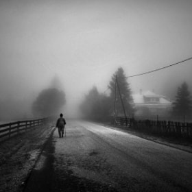 Walk Alone by Guy Cohen (guy_santos)) on 500px.com