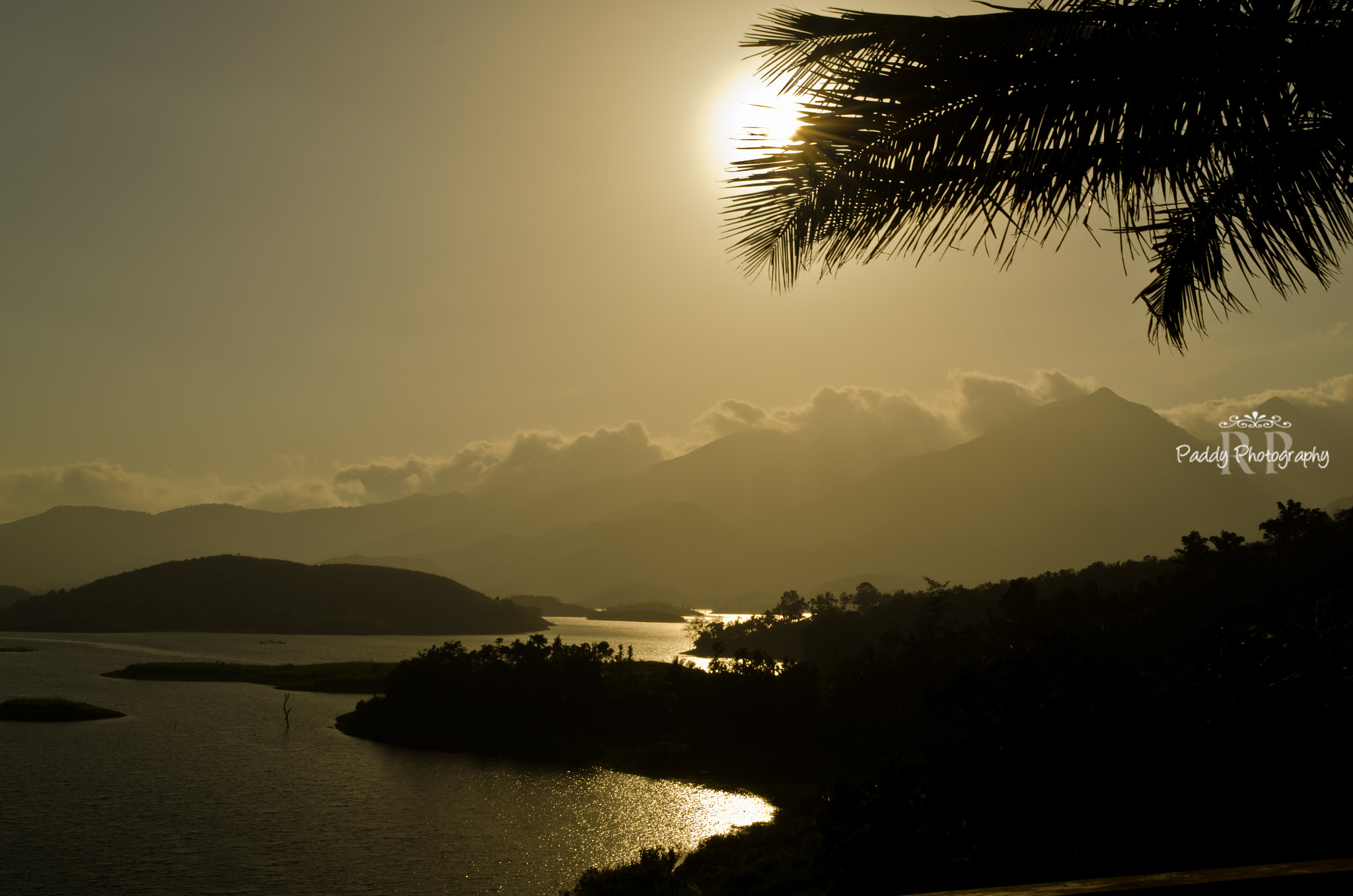 Photograph Sun behind palm by Paddy  on 500px