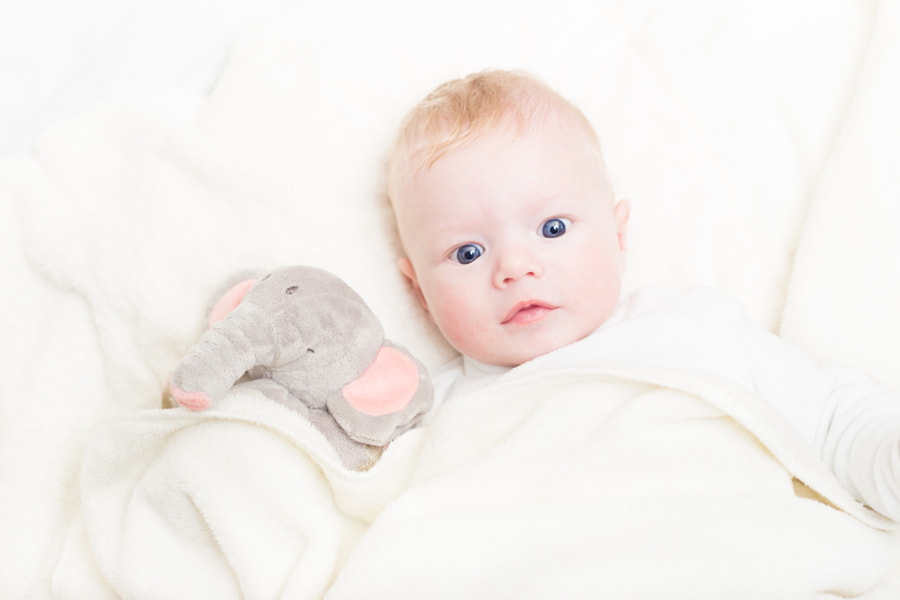 Baby with plush toy. by Matej Kastelic on 500px.com