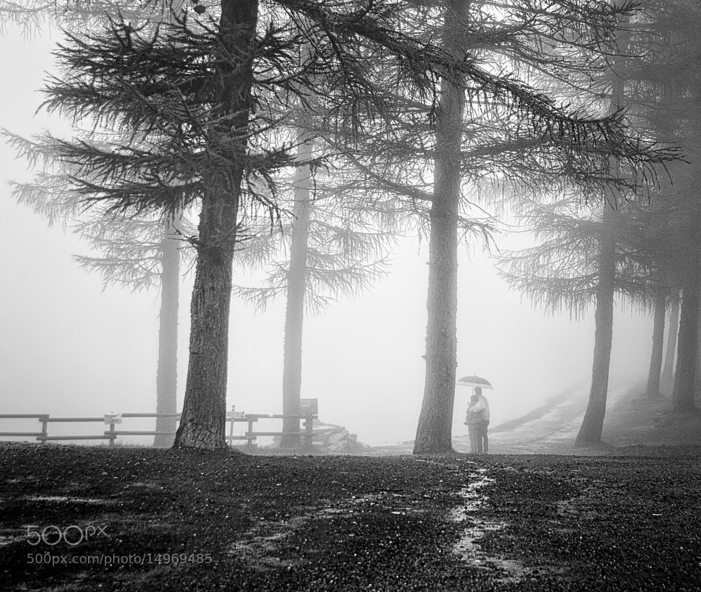 Photograph ..pulsa il cuore  by Silena  Lambertini on 500px