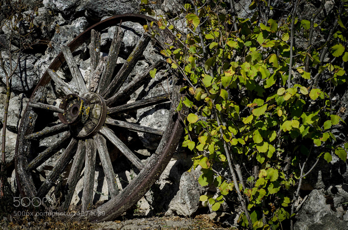 Photograph rueda by Miguel Bustos on 500px