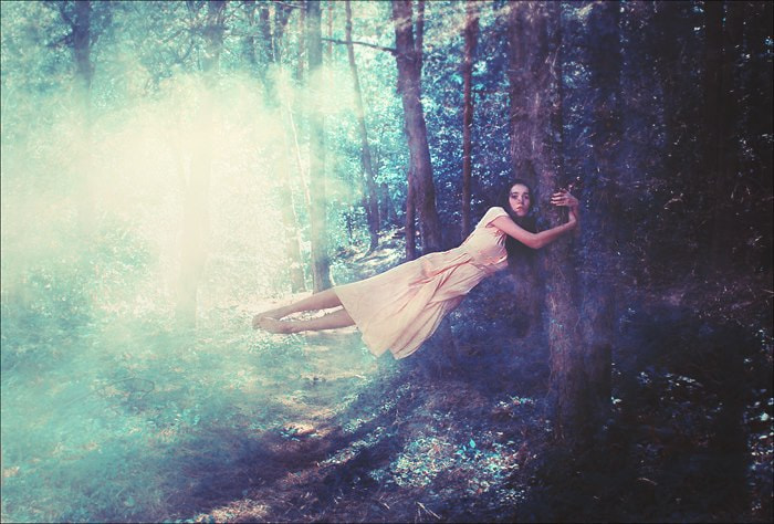 Photograph The Tree of Life by Felicia Simion on 500px